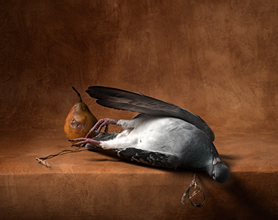 nature morte chardin pigeon